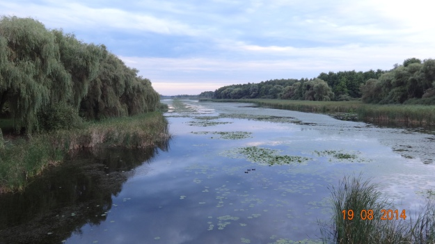 Kis-Balaton nature reserve - look clear water!