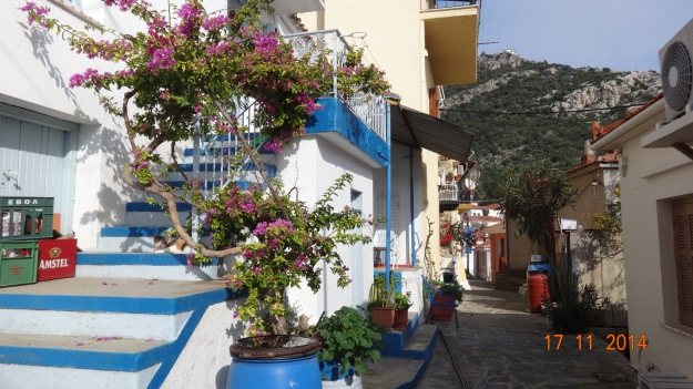 the colourful backstreets