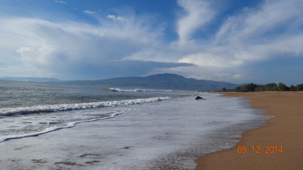 a morning walk along the beach..
