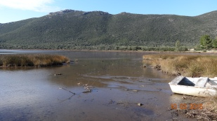 The lagoon is very shallow and a bit tidal (there is some around here). Home to many wading birds including Flamingos.
