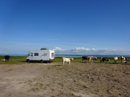 Up high on The Gower with views for miles: 51.588986 -4.180088