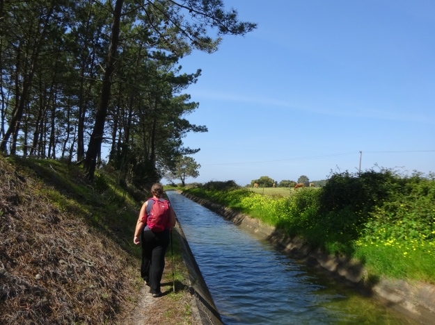 along an irrigation channel, providing water for the extensive garden plant going business here.