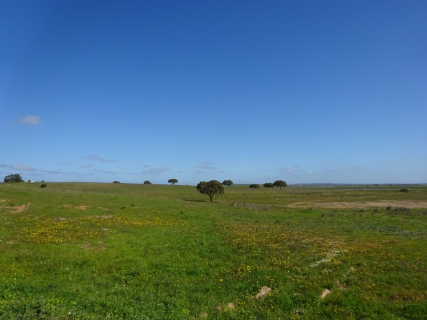 wide open space in Alentejo