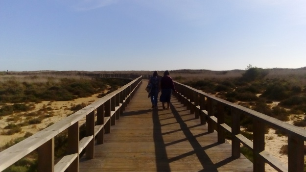 extensive boardwalk over the dunes and mudflats at Alvor